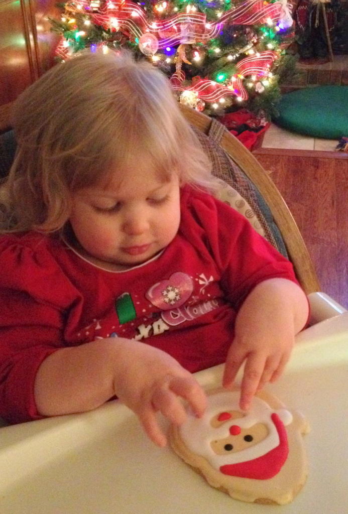 Santa Cookie Dec 2013 SNAG-0004