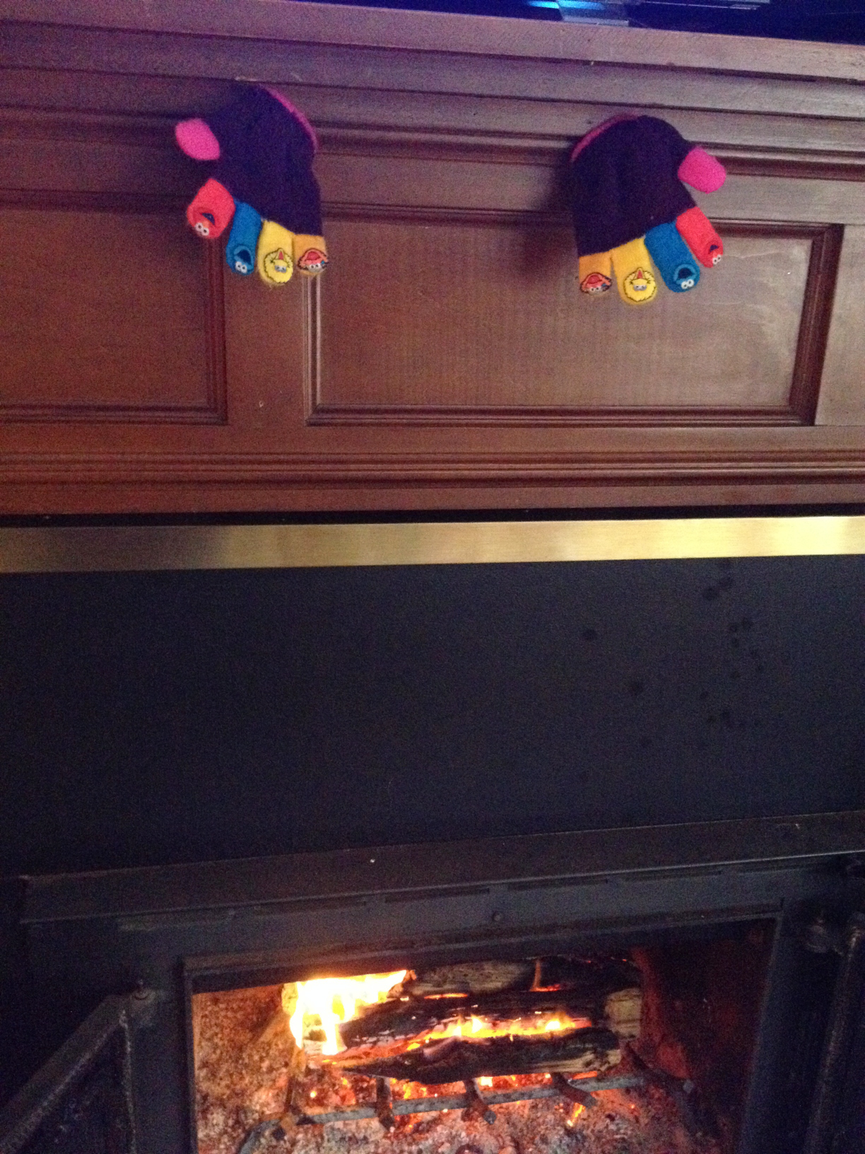 Rhema Gloves Heating near Fireplace Jan 2014 SNAG-0006