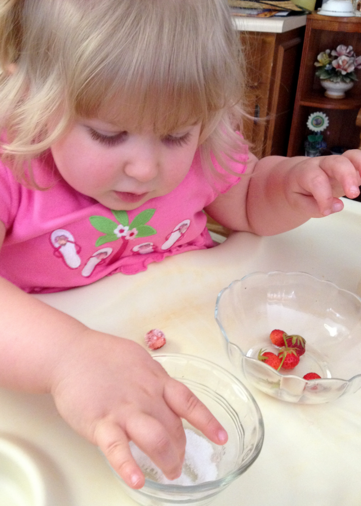 Rhema 1st Strawberries from Her Garden May 2014 SNAG-0013