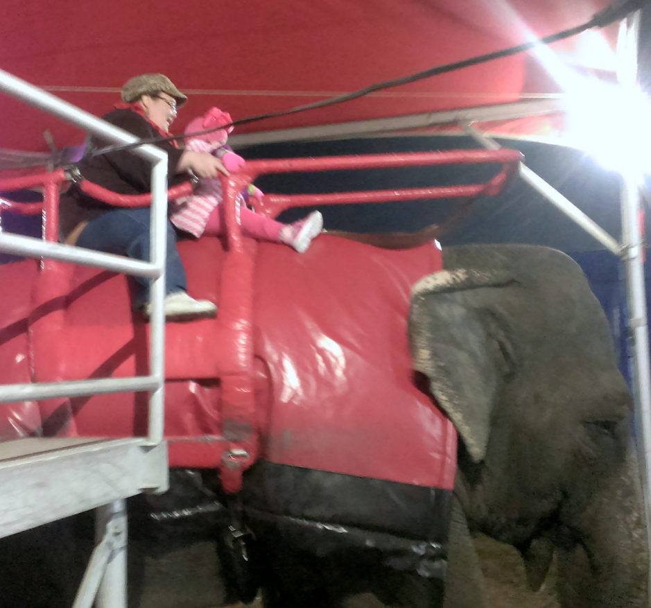 Rhema's 1st Elephant Ride2 Fair Nov 2014 SNAG-0008