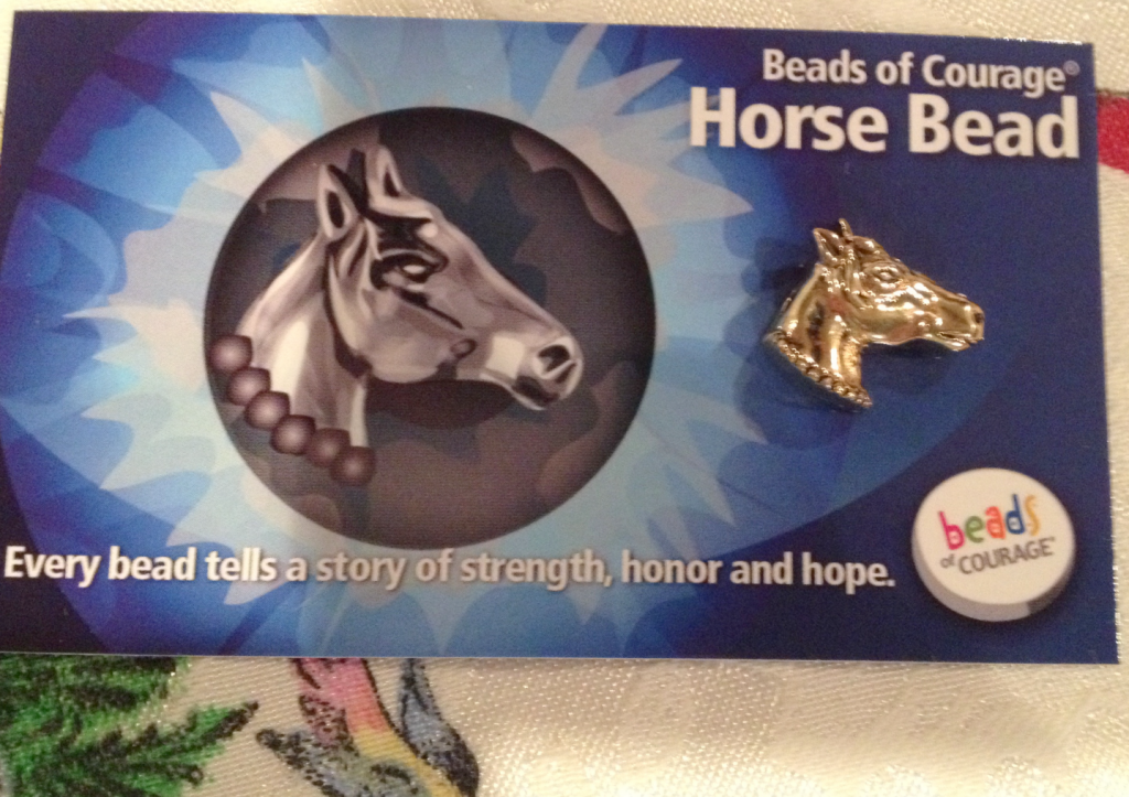 Beads of Courage Horse Jan 2015 SNAG-0005